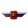 Должностной знак начальника военной академии (Сухопутные войска) №22