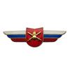 Должностной знак командира учебной воинской части, воинского формирования (Сухопутные войска) №24