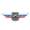 Должностной знак командира бригады и ей равного соединения (РВиА)