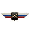 Должностной знак начальника высшего военного училища профессиональной образовательной организации и общеобразовательной организации (РВиА)