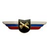 Должностной знак командира учебной воинской части и другого воинского формирования (ПВО)