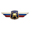 Должностной знак командира дивизии и ей равного соединения (РВСН)