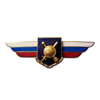 Должностной знак командира полка и ему равной воинской части (РВСН)