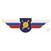 Должностной знак командира отдельного дивизиона к ему равной воинской части (РВСН)