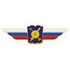Должностной знак начальника военной академии (РВСН)