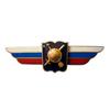 Должностной знак начальника высшего военного училища, профессиональной образовательной организации и общеобразовательной организации (РВСН)