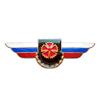Должностной знак командира бригады и ей равного соединения (СпН)