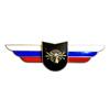 Должностной знак командира учебной воинской части и другого воинского формирования (РЭБ)