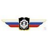 Должностной знак начальника военной академии (Инженерные войска)