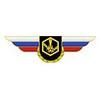 Должностной знак командира бригады и ей равного соединения (РХБЗ)