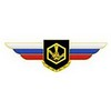Должностной знак командира полка и ему равной воинской части (РХБЗ)