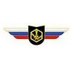 Должностной знак командира учебной воинской части и другого воинского формирования (РХБЗ)