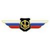 Должностной знак начальника (руководителя) воинского формирования, ведущего научно-исследовательскую (испытательную) деятельность (РХБЗ)
