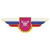Должностной знак командира бригады и ей равного соединения (МТО ВС) №132