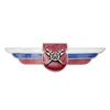 Должностной знак командира отдельного батальона и ему равной воинской части (МТО ВС) №134