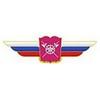 Должностной знак начальника военной академии (МТО ВС) №135