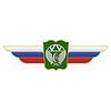 Должностной знак начальника общеобразовательной организации (ЖДВ) №145