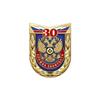 Знак «30 лет государственной службе занятости населения»